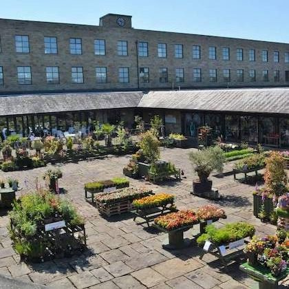 Cafe overlooking courtyard and garden centre