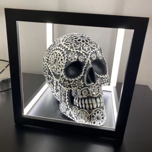 Black & Cream Skull Lightbox