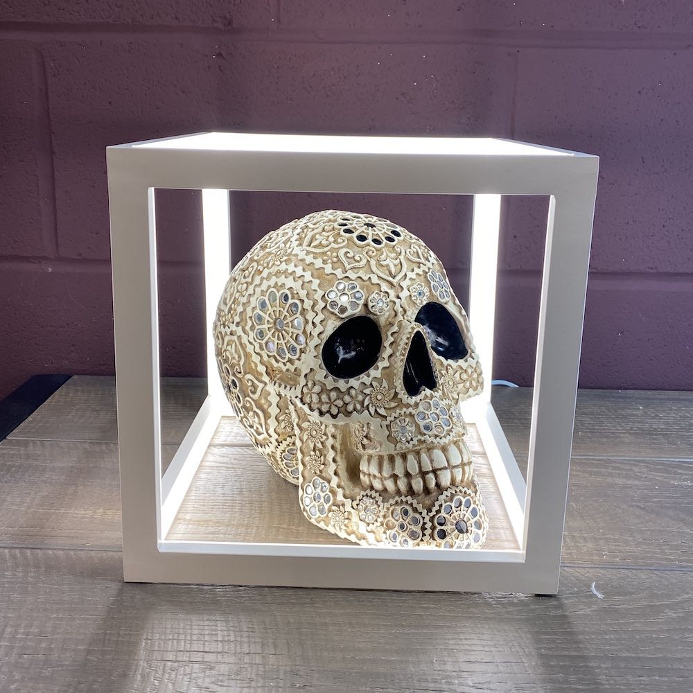 Cream & Gold Skull Lightbox
